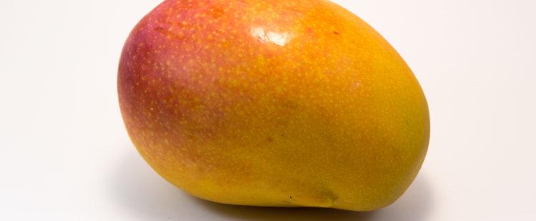 Mango von Pois-Portugal