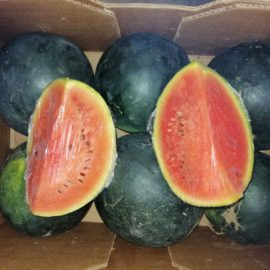 Wassermelonen im Weltladen zum Sonderpreis